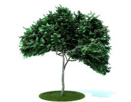 Green Plastic Tree With Long Trunk 3D model
