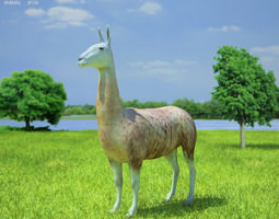 llama lama glama game-ready 3d model