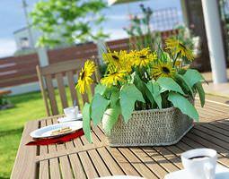 photorealistic garden plants collection 3d