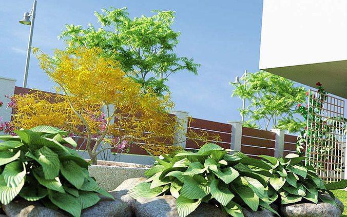 realistic garden plants collection 3d model obj fbx c4d mxs 1