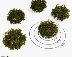 3D collection bushes Bushes Collection - Set