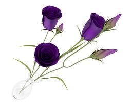 eustoma flowers in vase 3d