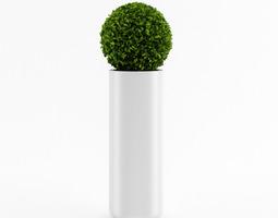 3D model Spherical house plant