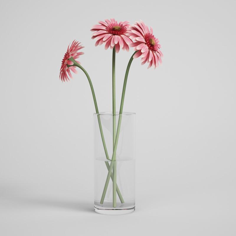3d Pink Gerbera Daisies In Glass Vase 18 Cgtrader