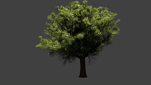 Realistic Trees Scene Free 3d Model – Dibujos Para Colorear