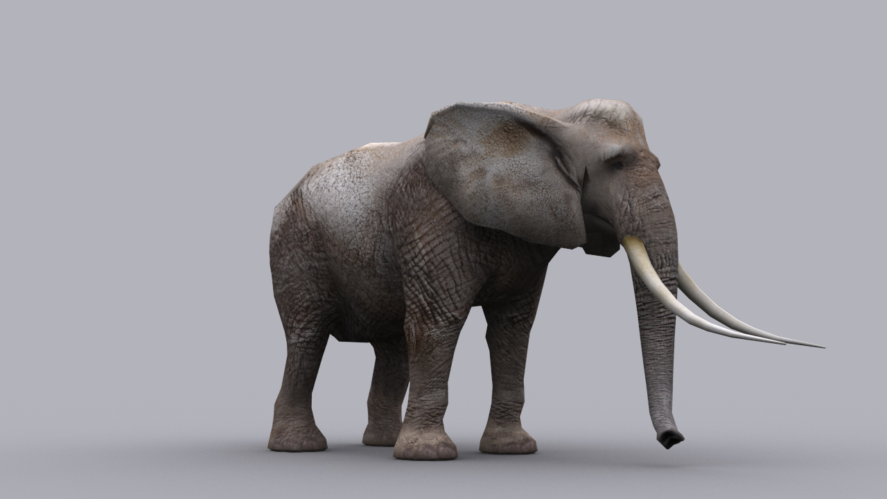 3d Model Elephant Game Ready Animated Model Vr Ar Low