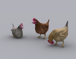 CHICKEN GAME READY ANIMATED MODEL 3D asset