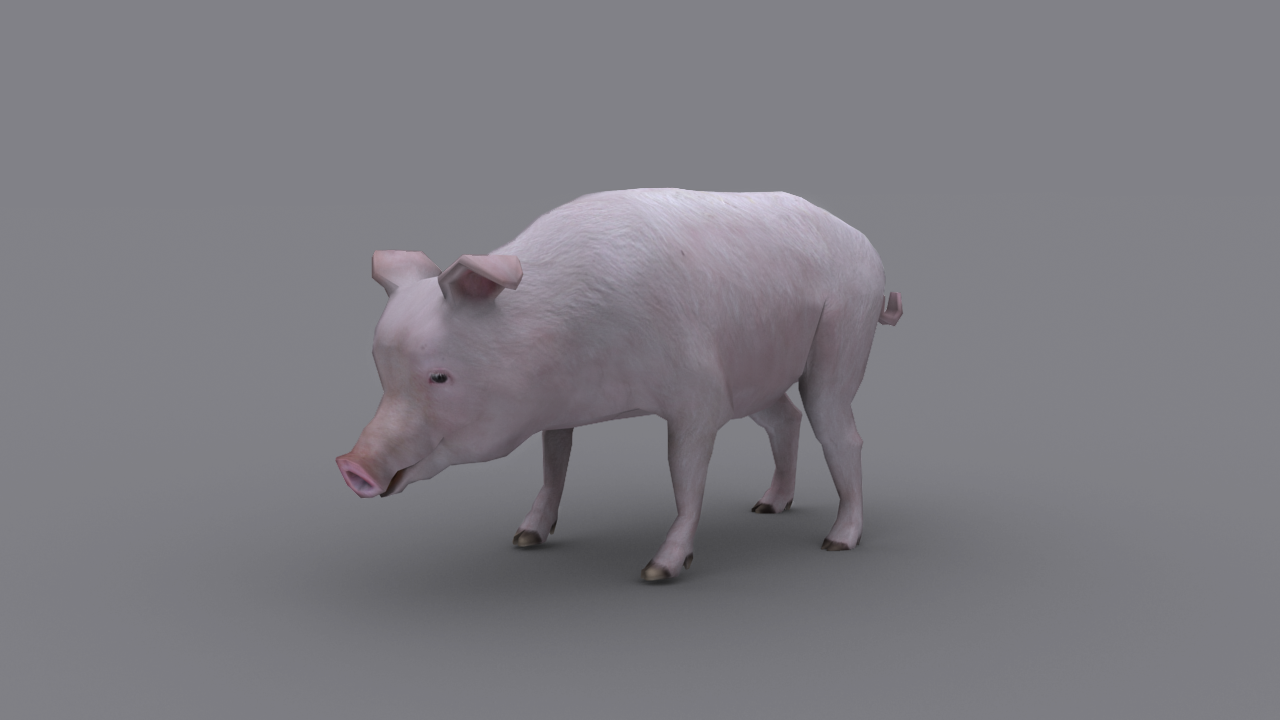 PIG GAME READY ANIMATED MODEL