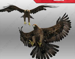 3D model Golden Eagle Animated