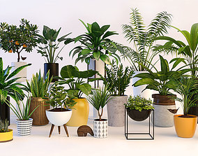 tree 3D model Plants