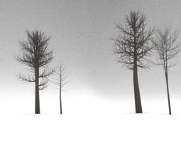 Dead Trees 3D asset low-poly