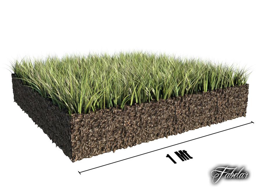 Grass patch 01