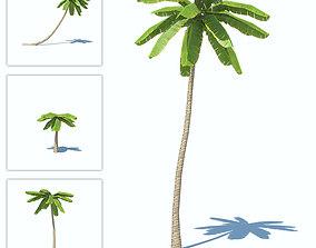 Palms low-poly 3D model