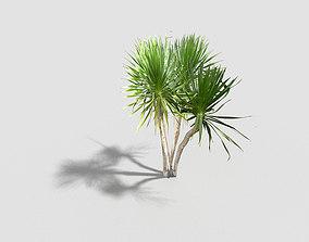 3D model VR / AR ready Tree flower