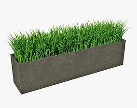 Grass in pot 02 3D