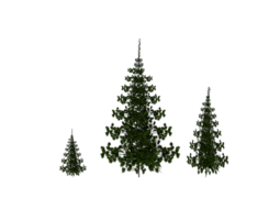 3D asset Low Poly Trees