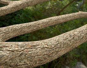 Jungle Logs Collection 3D model