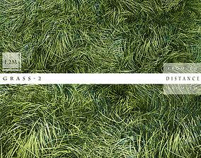 Grass botony 3D model
