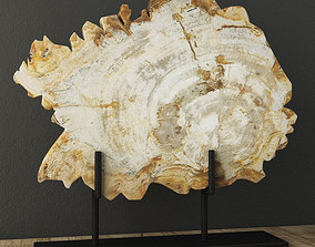 3D Petrified Wood On Stand