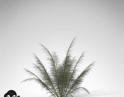 xfrogplants onychiopsis 3d model max 3ds c4d lwo lw lws ma mb mtl
