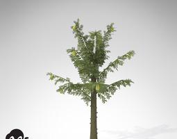 XfrogPlants Alethopteris 3D Model