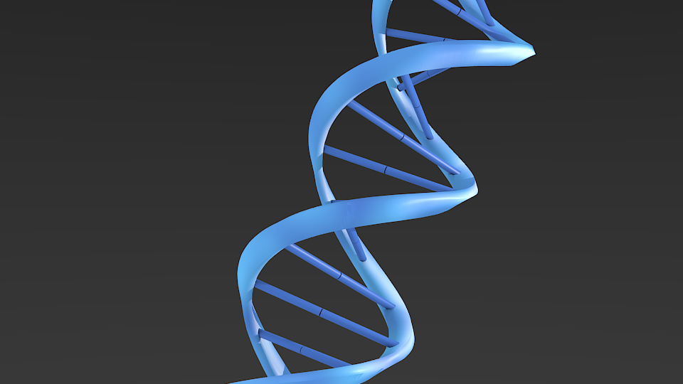 dna double helix This led the two of them to postulate the famous double-helix structure of dna a helix is a cylindrical spiral a double-helix is basically just two cylindrical spirals picture dna as a ladder with backbones made of phosphate groups and sugars and rungs of nitrogenous bases held together by hydrogen bonds.