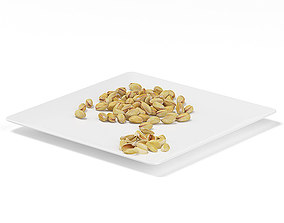 Pistachios on White Plate 3D model