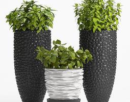 Decorative plants set-1 3D
