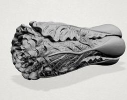 Vegetable 3D printable model