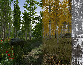 Scanned Poplar and Aspen Forest with Seasons 3D asset 3