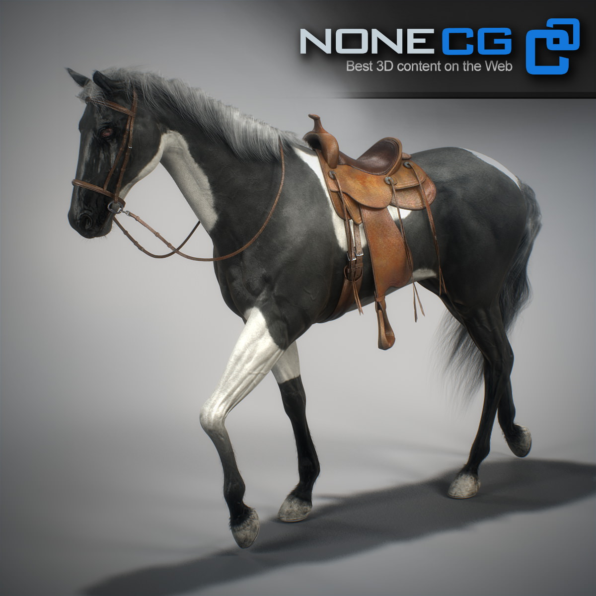 Animated Horses 3ds Max 3d Model Animated Rigged Max