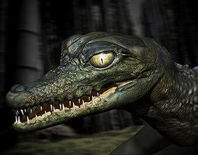 Birth of a Crocodile 3D model