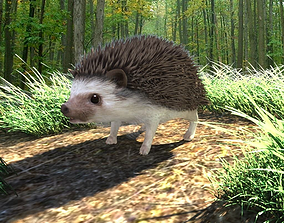 Rigged Hedgehog realistic model 3D asset
