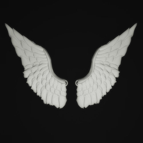 Angel Wings 3D Print Model