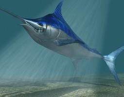 Blue marlin toon fish 3D Model
