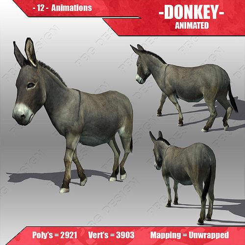 donkey animated 3d model cgtrader. Black Bedroom Furniture Sets. Home Design Ideas