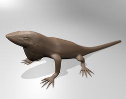 anole lizard 3d printable model