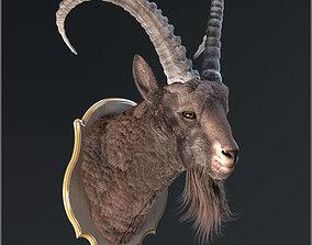 Goat trophy 3D model