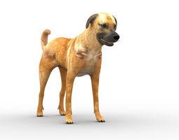 Nice dog 3D model