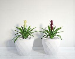 plant 44 am141 3D model