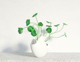 plant 19 am141 3D