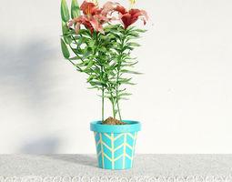 3D plant 01 am141