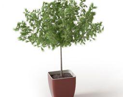 3D Plant 63 Archmodels vol 66
