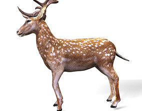 Deer 3D Model animated