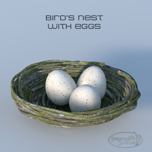 bird nest marketing plan summary We provide a summary of research results the market research insights we gather can be further leveraged by choosing to develop a marketing plan with nest.