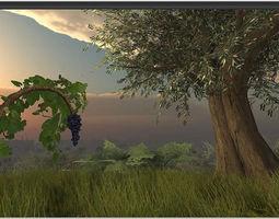 3D asset Mediterranean Vegetation