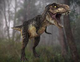 tyrannosaurus rex dinosaur 3D