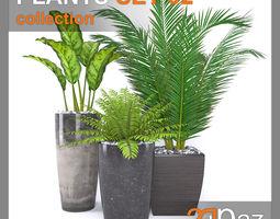 tropical PLANTS SET 02 3D model