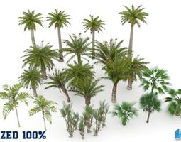 Palm Trees Pack Optimized 3D model low-poly