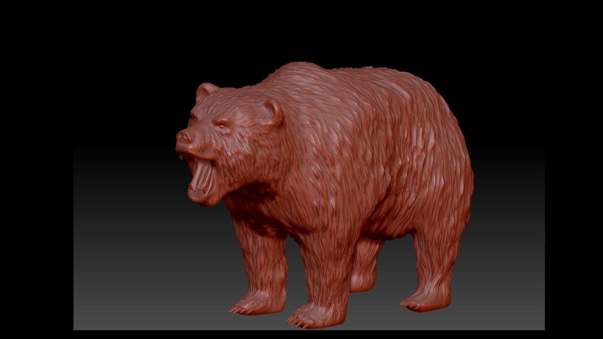 Bear 3D model